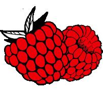 raspberry 1 - Old story