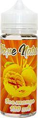 Vape Nation Ice Mango