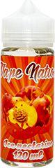Vape Nation Ice Nectarine